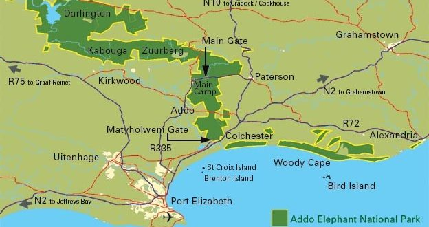 Algoa Bay met Addo National Park in Zuid Afrika