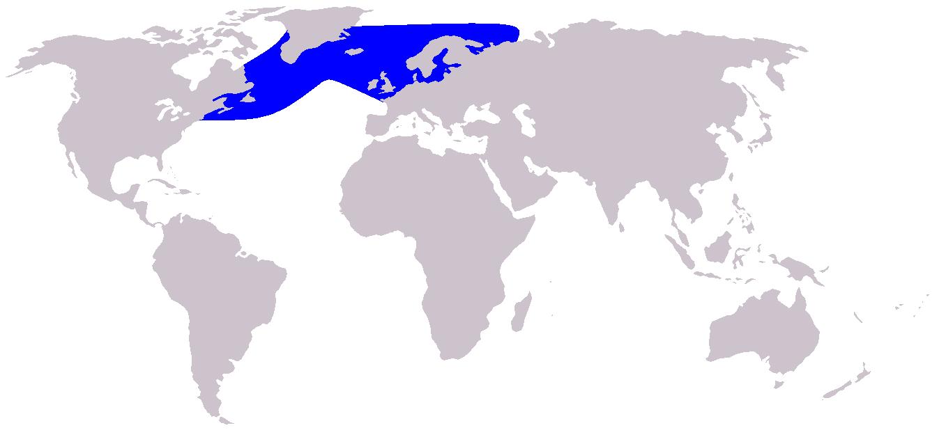 Verspreidingskaart witsnuitdolfijn (Wikipedia)