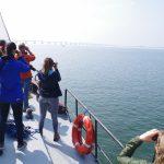 Op zoek naar de eerste bruinvis (Foto F. Zanderink)